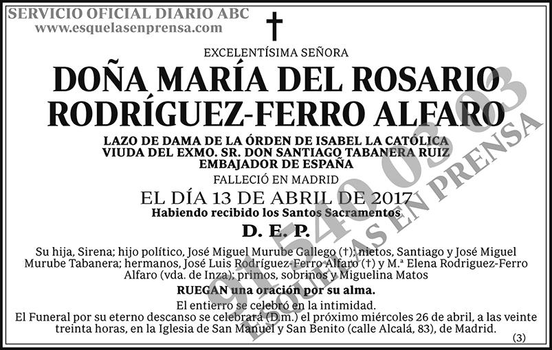 María del Rosario Rodríguez-Ferro Alfaro